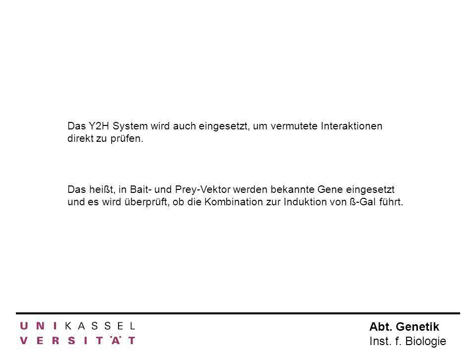 Das Y2H System wird auch eingesetzt, um vermutete Interaktionen direkt zu prüfen.