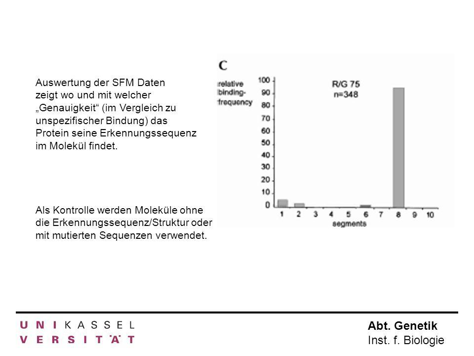 """Auswertung der SFM Daten zeigt wo und mit welcher """"Genauigkeit (im Vergleich zu unspezifischer Bindung) das Protein seine Erkennungssequenz im Molekül findet."""
