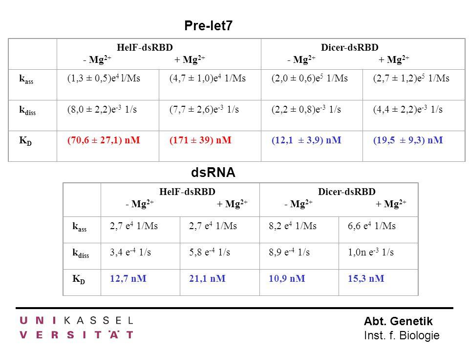 Pre-let7 dsRNA HelF-dsRBD - Mg2+ + Mg2+ Dicer-dsRBD kass