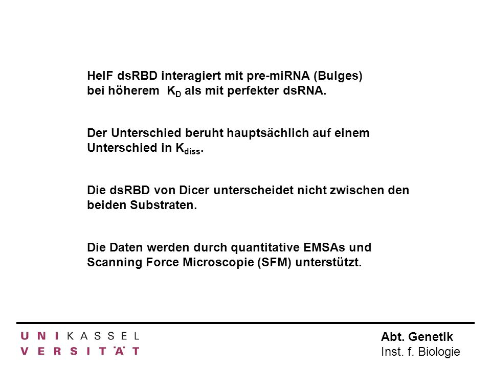 HelF dsRBD interagiert mit pre-miRNA (Bulges) bei höherem KD als mit perfekter dsRNA.