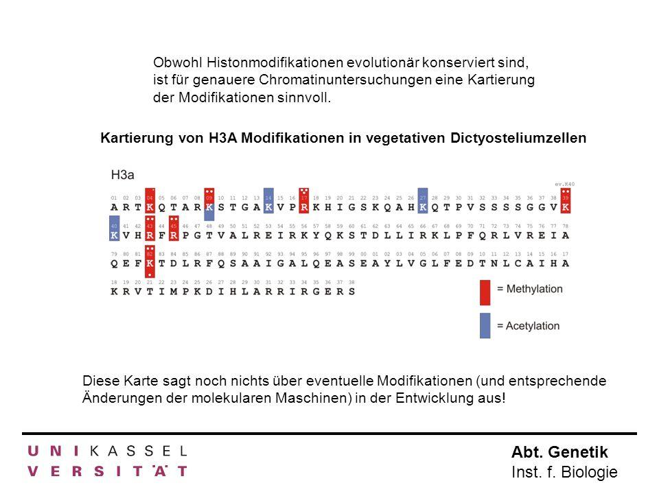 Obwohl Histonmodifikationen evolutionär konserviert sind, ist für genauere Chromatinuntersuchungen eine Kartierung der Modifikationen sinnvoll.