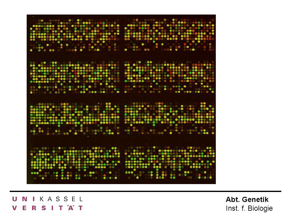 a) Microarrays Krankes Gewebe Gesundes Gewebe RNA isolieren