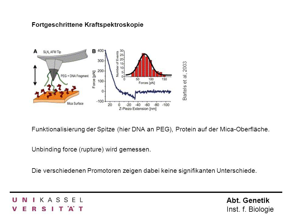 Fortgeschrittene Kraftspektroskopie