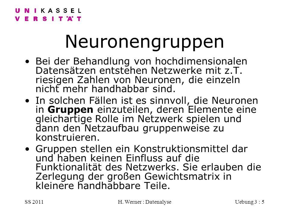Neuronengruppen