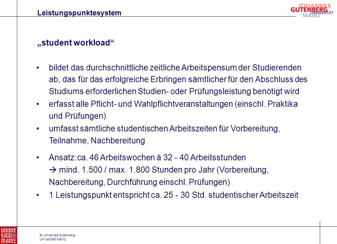1 Leistungspunkt entspricht ca. 25 - 30 Std. studentischer Arbeitszeit