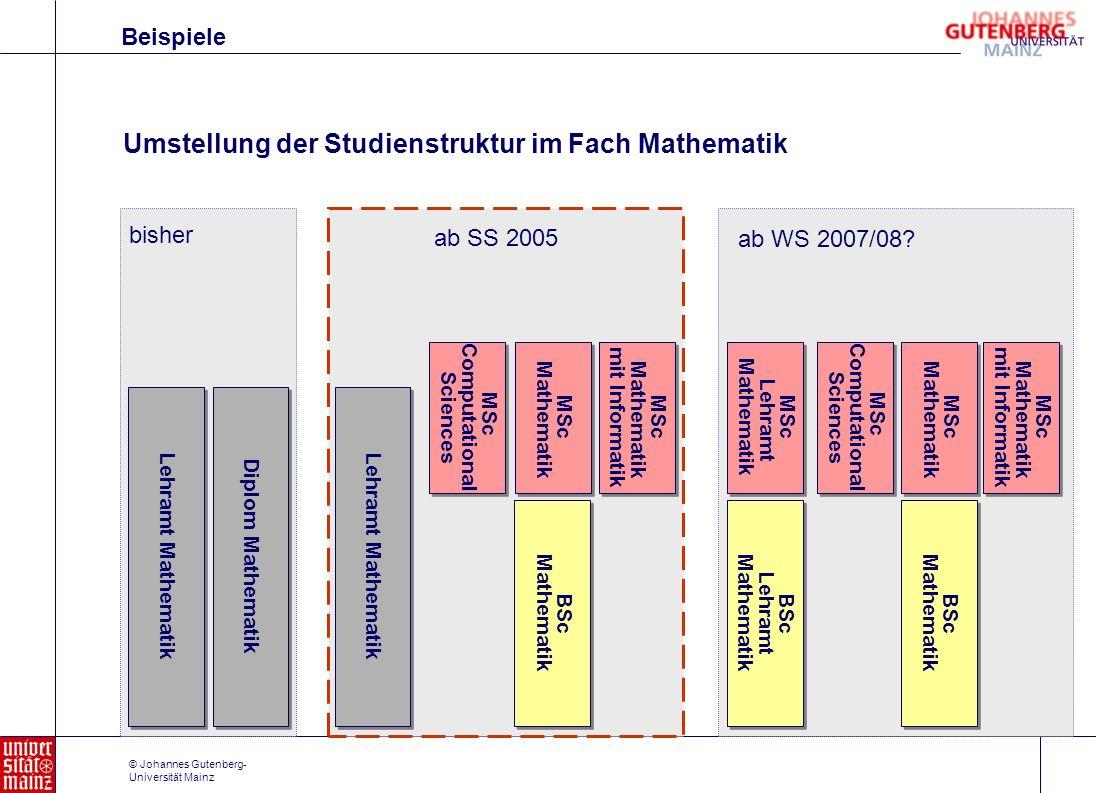 Umstellung der Studienstruktur im Fach Mathematik