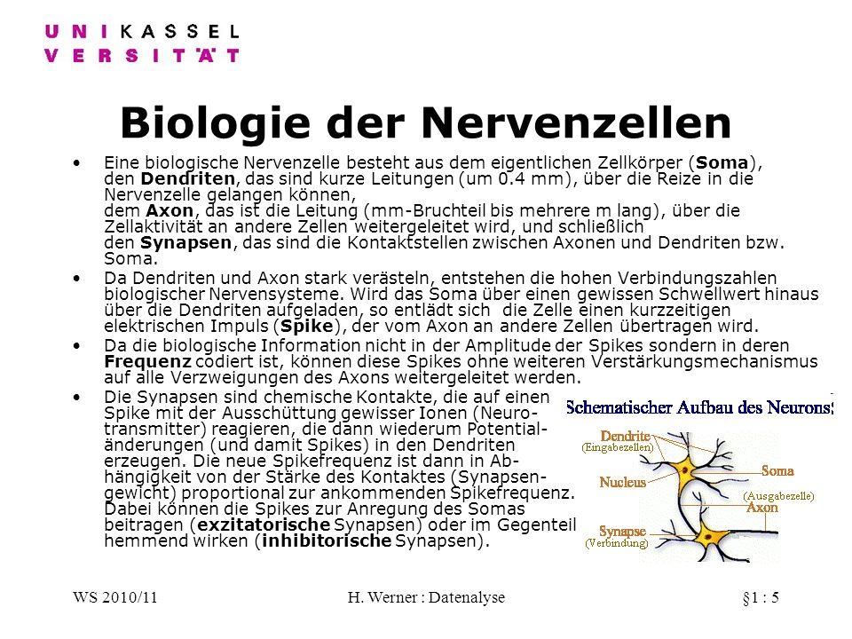 Biologie der Nervenzellen