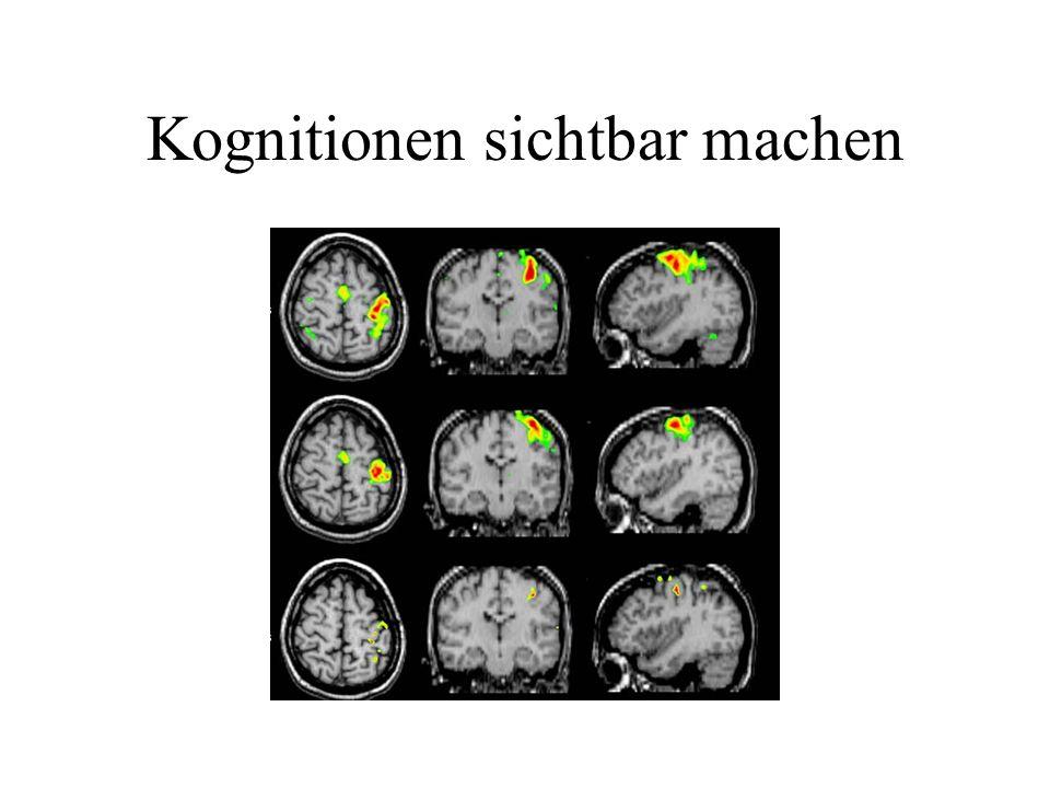Kognitionen sichtbar machen