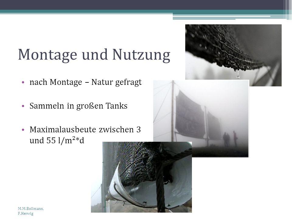 Montage und Nutzung nach Montage – Natur gefragt