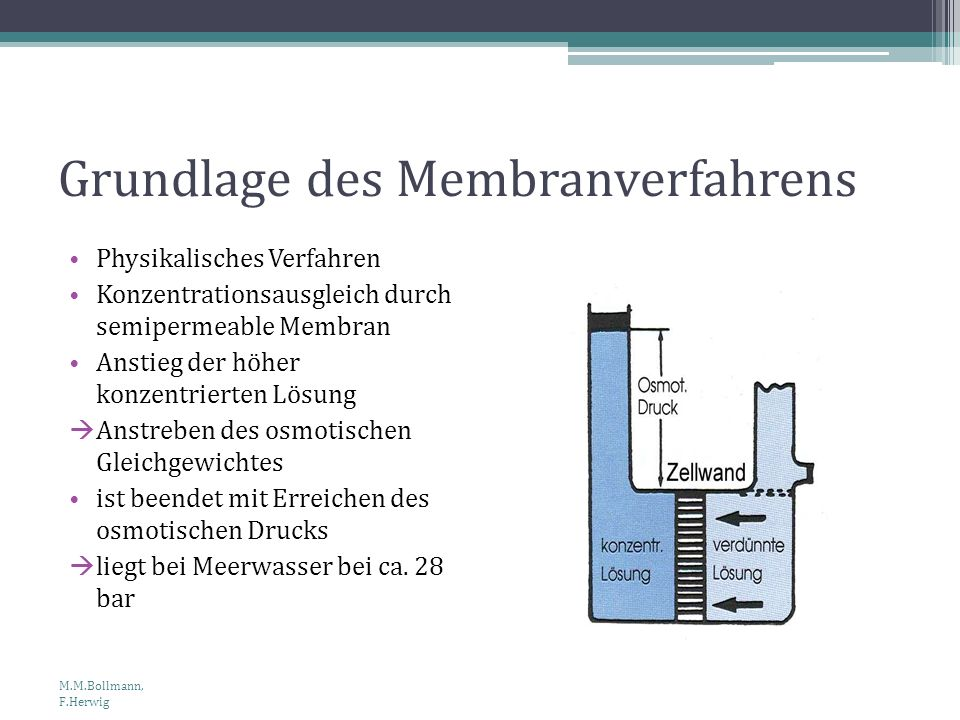 Grundlage des Membranverfahrens