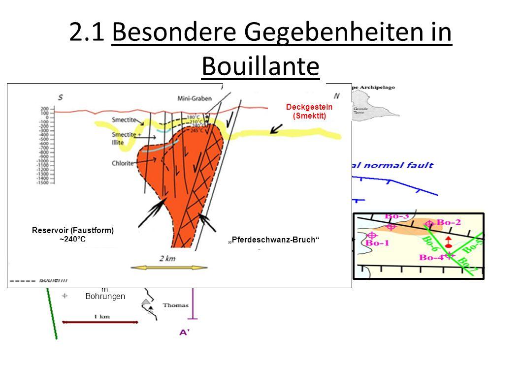 2.1 Besondere Gegebenheiten in Bouillante