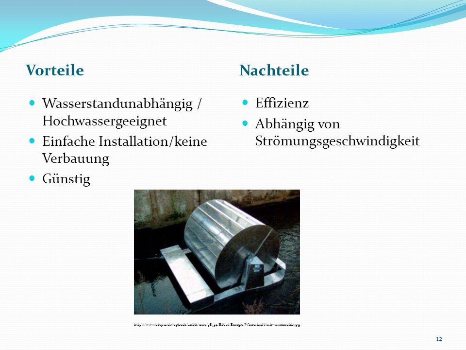 Vorteile Nachteile Wasserstandunabhängig / Hochwassergeeignet