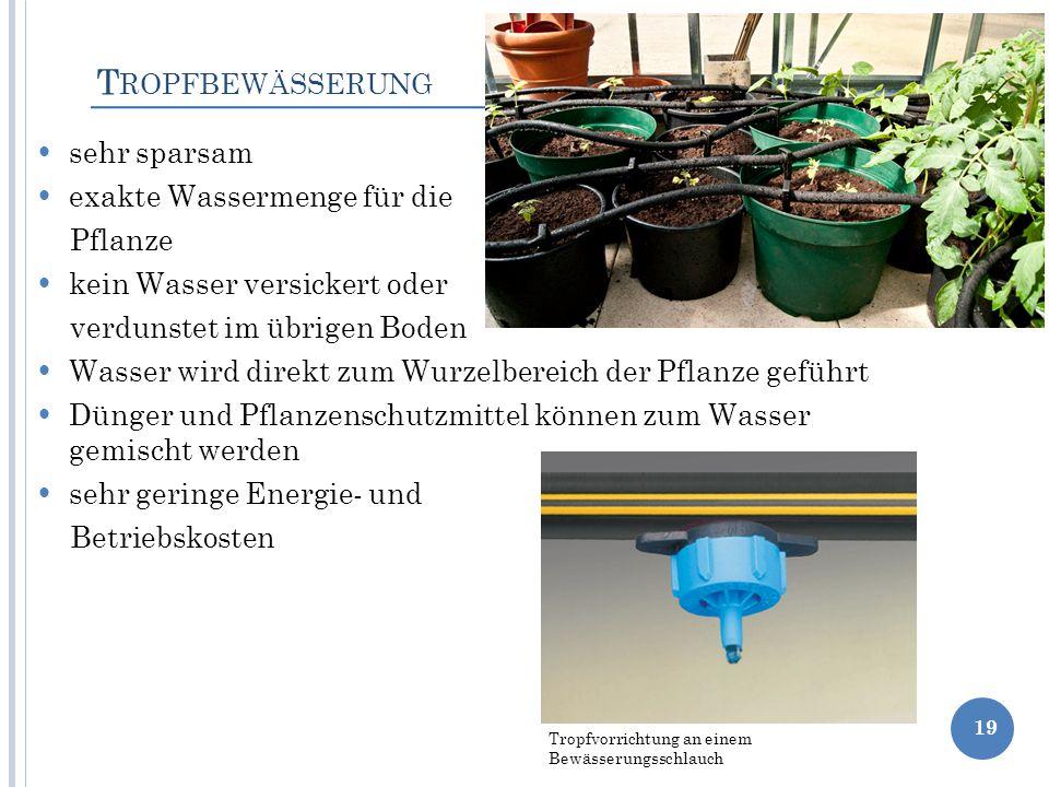 Tropfbewässerung sehr sparsam exakte Wassermenge für die Pflanze