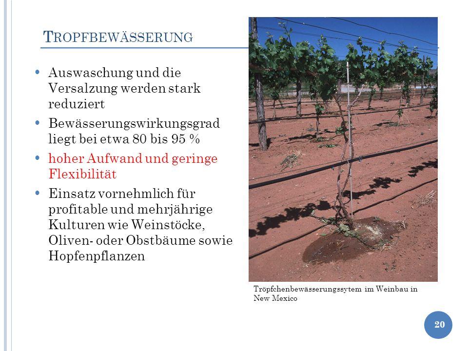 Tropfbewässerung Auswaschung und die Versalzung werden stark reduziert
