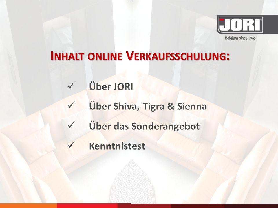 Inhalt online Verkaufsschulung: