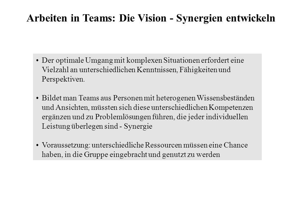 Arbeiten in Teams: Die Vision - Synergien entwickeln