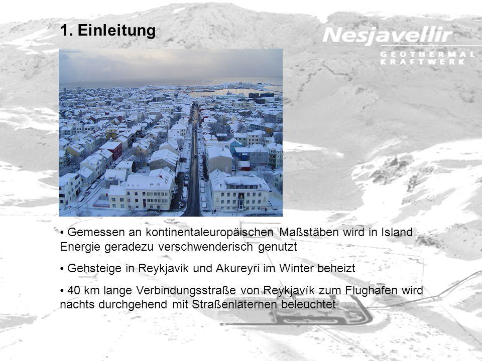 1. Einleitung Gemessen an kontinentaleuropäischen Maßstäben wird in Island Energie geradezu verschwenderisch genutzt.