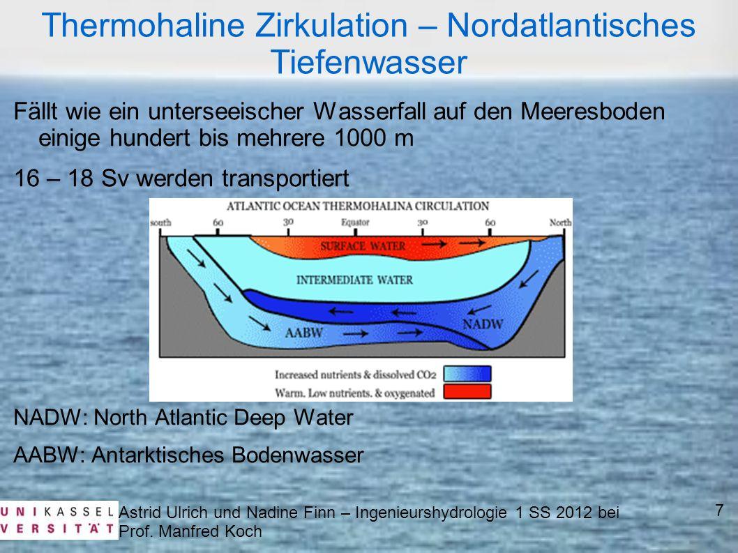 Thermohaline Zirkulation – Nordatlantisches Tiefenwasser