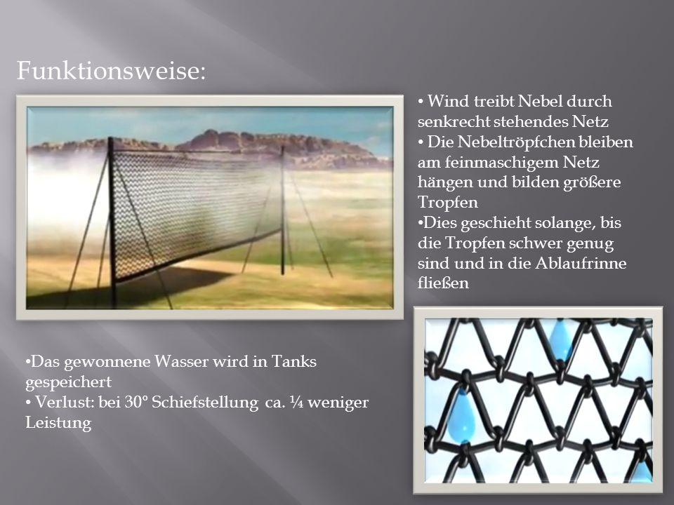 Funktionsweise: Wind treibt Nebel durch senkrecht stehendes Netz