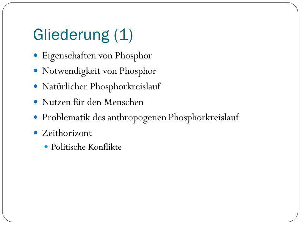 Gliederung (1) Eigenschaften von Phosphor Notwendigkeit von Phosphor