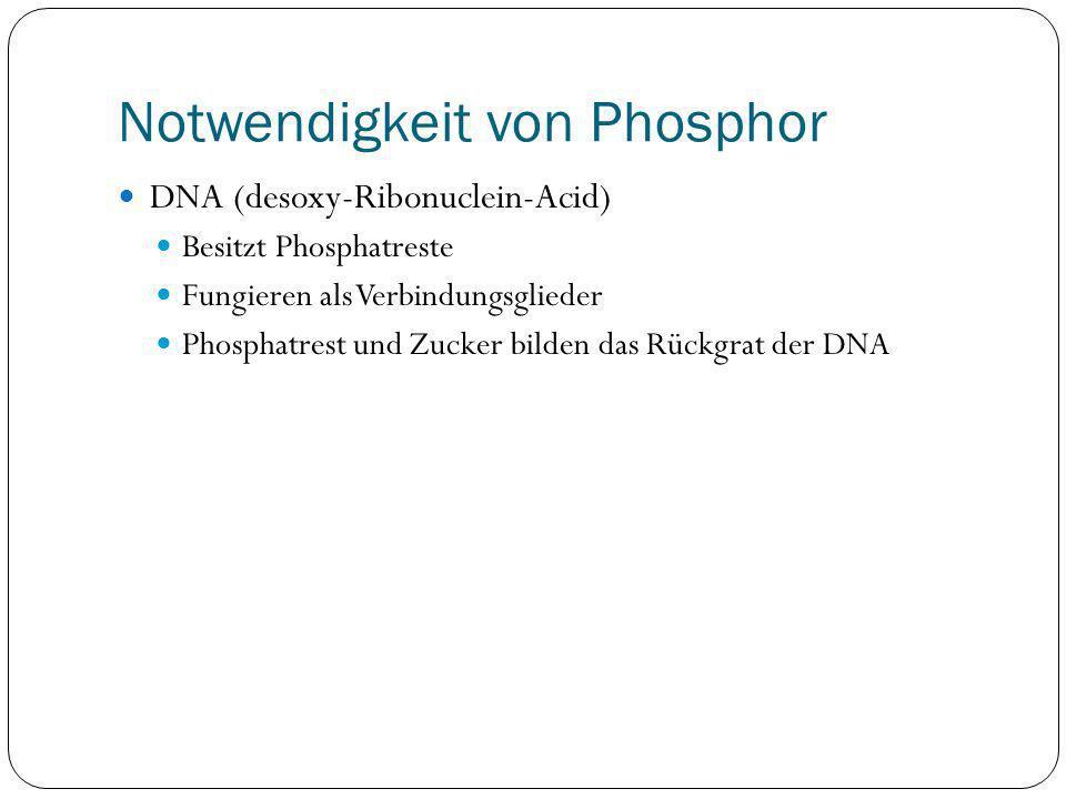 Notwendigkeit von Phosphor