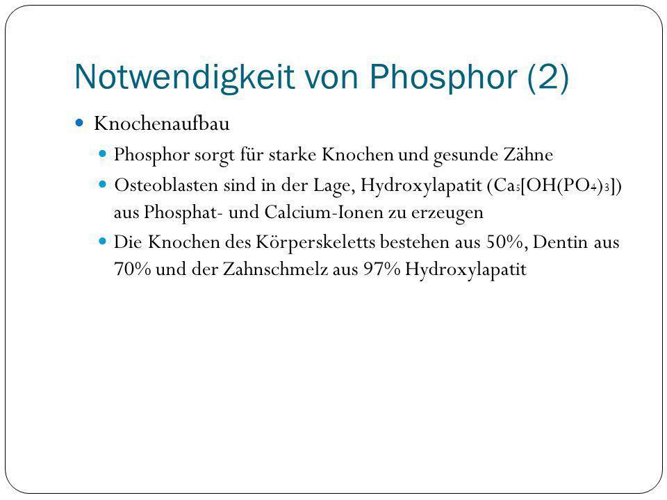 Notwendigkeit von Phosphor (2)