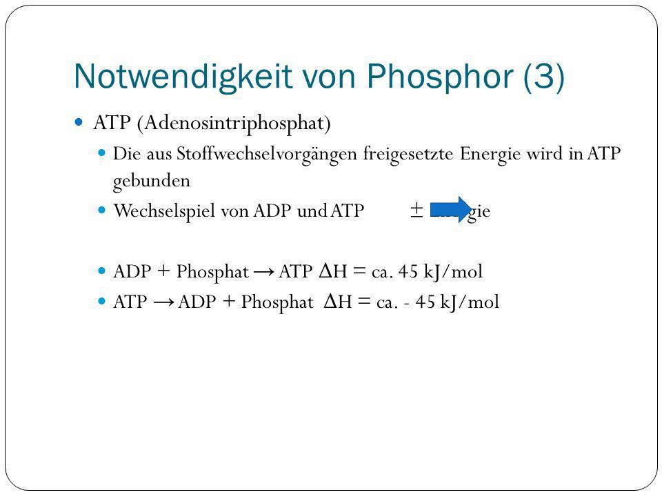 Notwendigkeit von Phosphor (3)