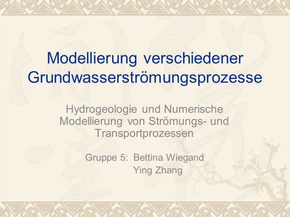 Modellierung verschiedener Grundwasserströmungsprozesse