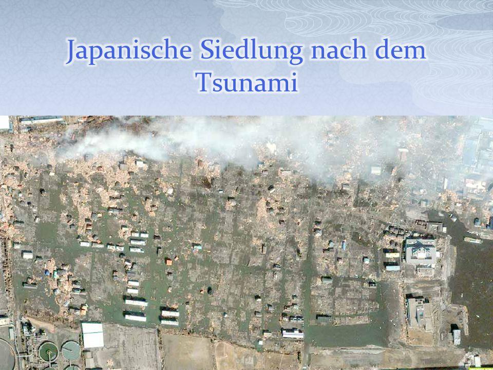 Japanische Siedlung nach dem Tsunami