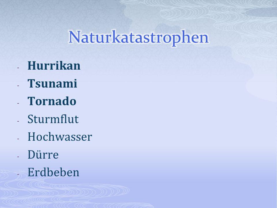 Naturkatastrophen Hurrikan Tsunami Tornado Sturmflut Hochwasser Dürre