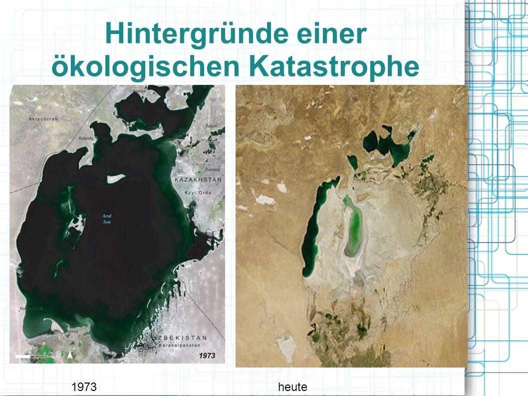 Hintergründe einer ökologischen Katastrophe