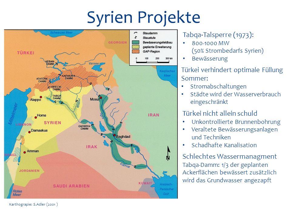 Syrien Projekte Tabqa-Talsperre (1973): Türkei nicht allein schuld
