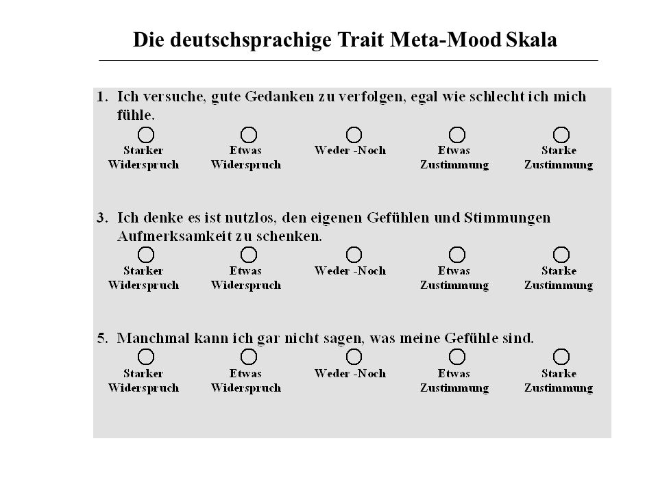 Die deutschsprachige Trait Meta-Mood Skala