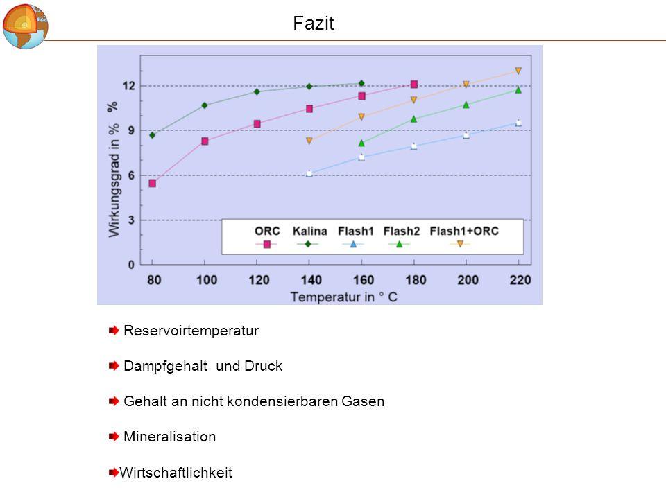Fazit Reservoirtemperatur Dampfgehalt und Druck