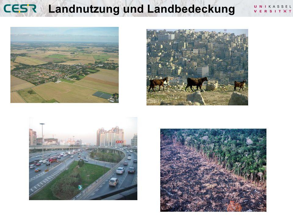 Landnutzung und Landbedeckung