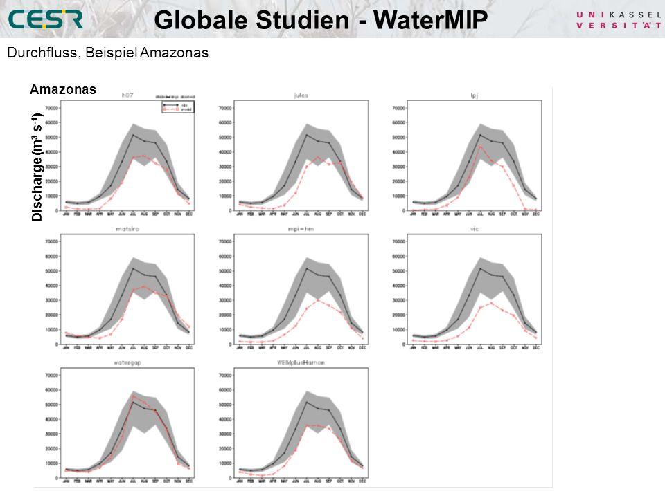 Globale Studien - WaterMIP
