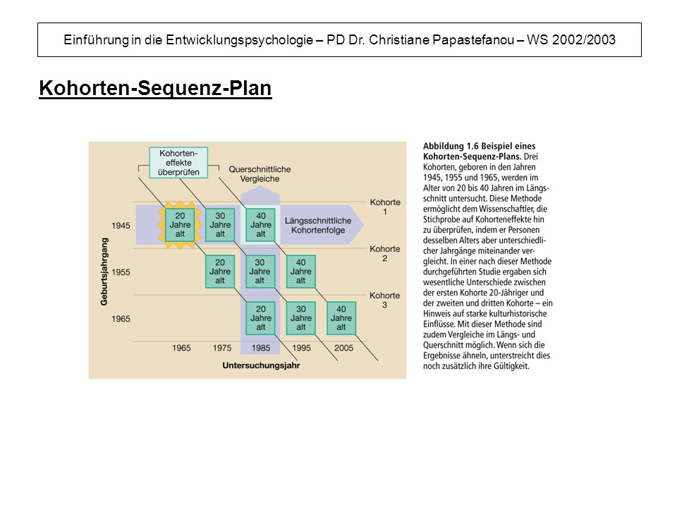 Kohorten-Sequenz-Plan
