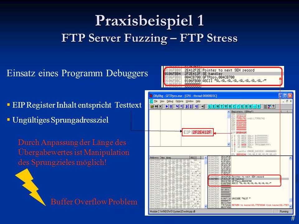 Praxisbeispiel 1 FTP Server Fuzzing – FTP Stress