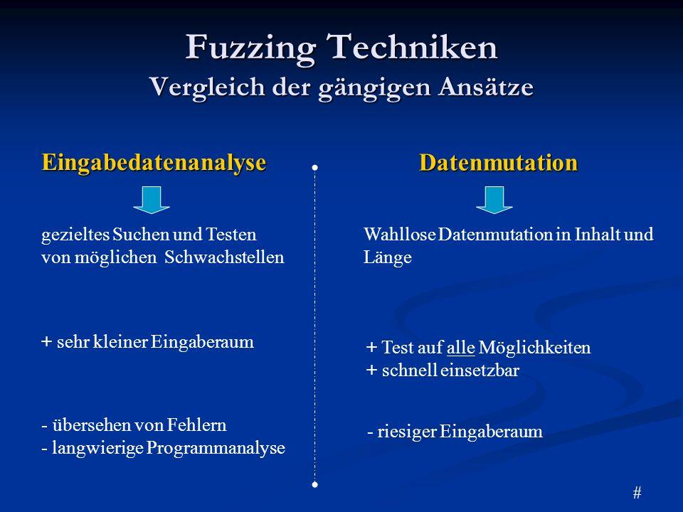 Fuzzing Techniken Vergleich der gängigen Ansätze