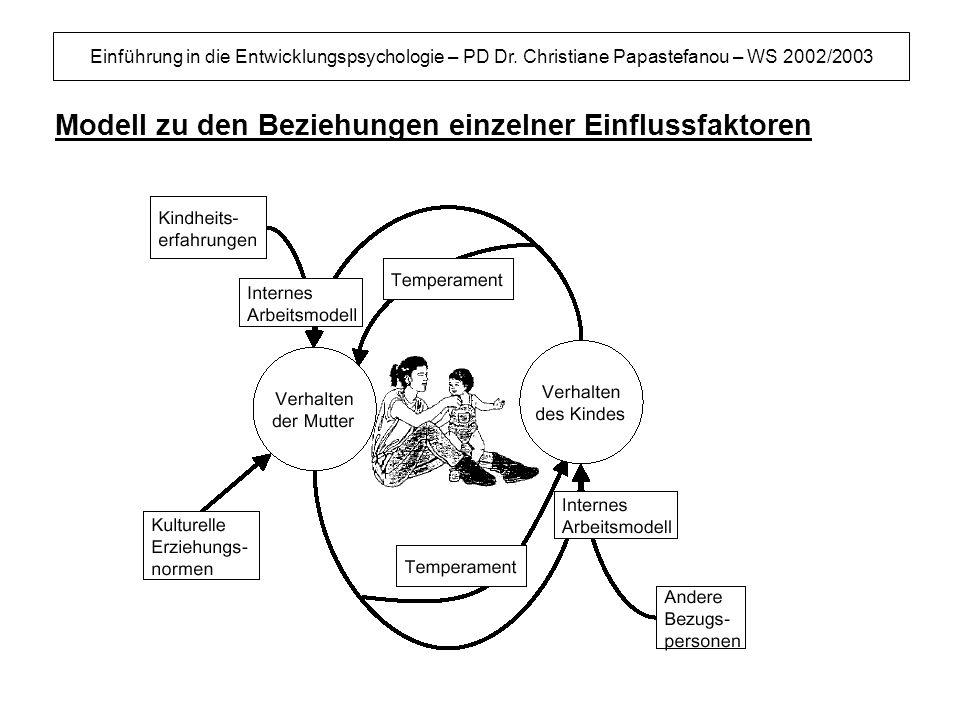 Modell zu den Beziehungen einzelner Einflussfaktoren