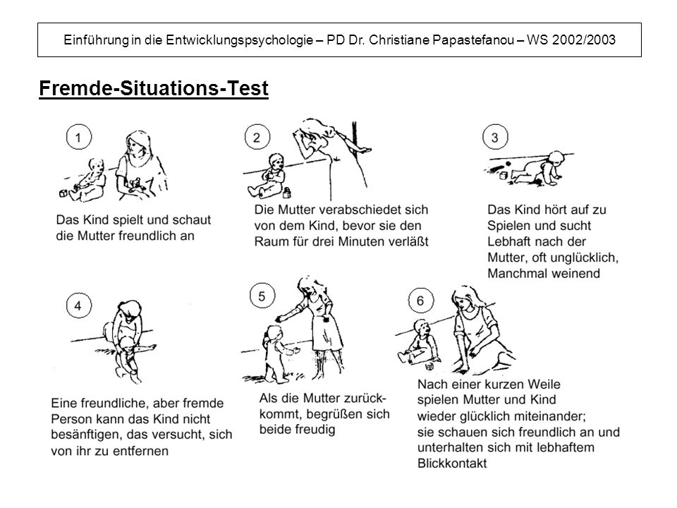 Fremde-Situations-Test