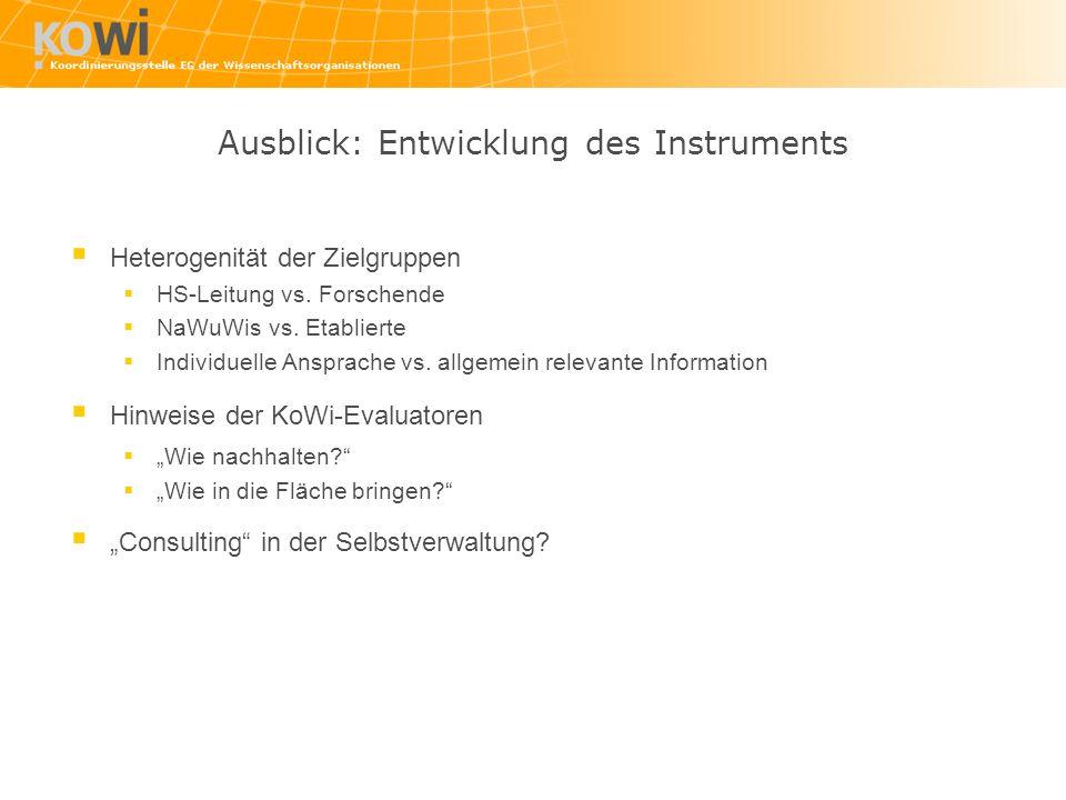 Ausblick: Entwicklung des Instruments