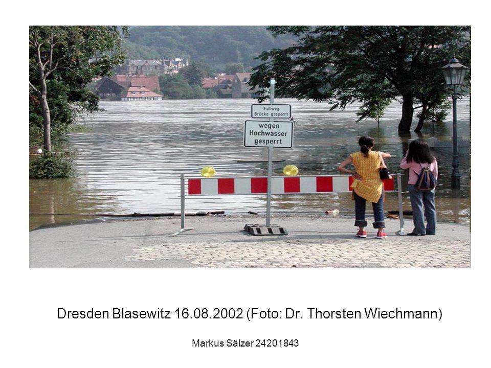 Dresden Blasewitz 16.08.2002 (Foto: Dr. Thorsten Wiechmann)
