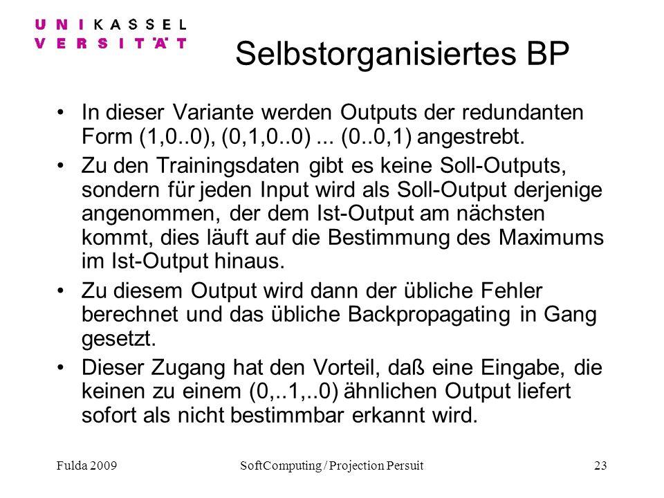 Selbstorganisiertes BP