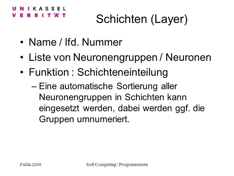 Soft Computing / Programmieren