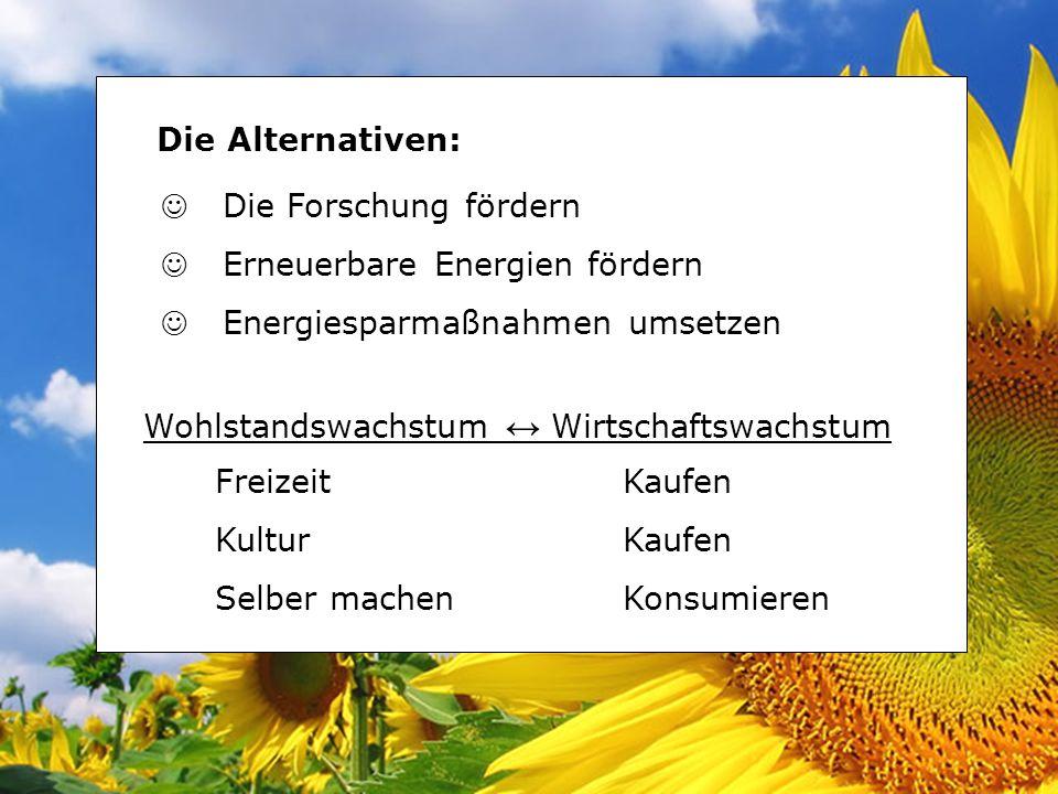 Die Alternativen: Die Forschung fördern. Erneuerbare Energien fördern. Energiesparmaßnahmen umsetzen.
