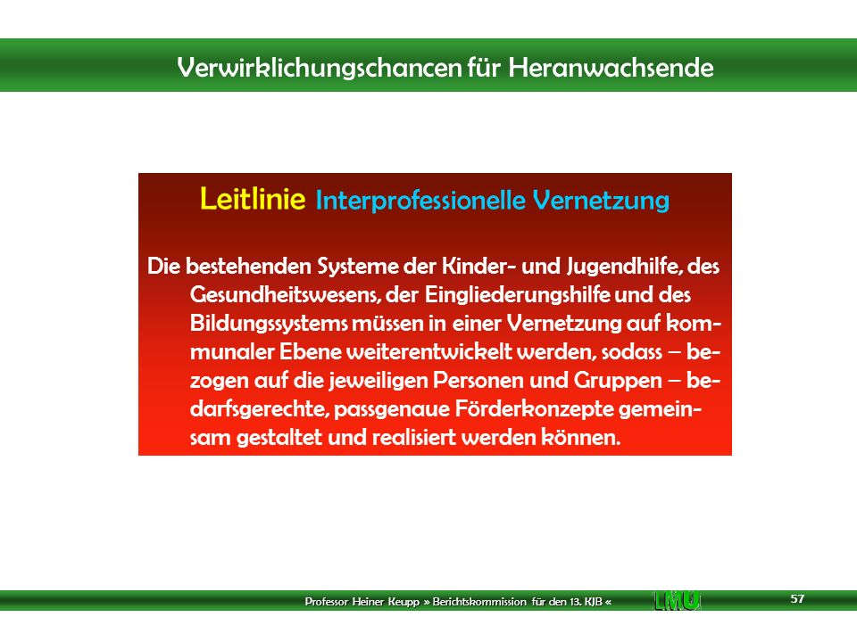 Leitlinie Interprofessionelle Vernetzung