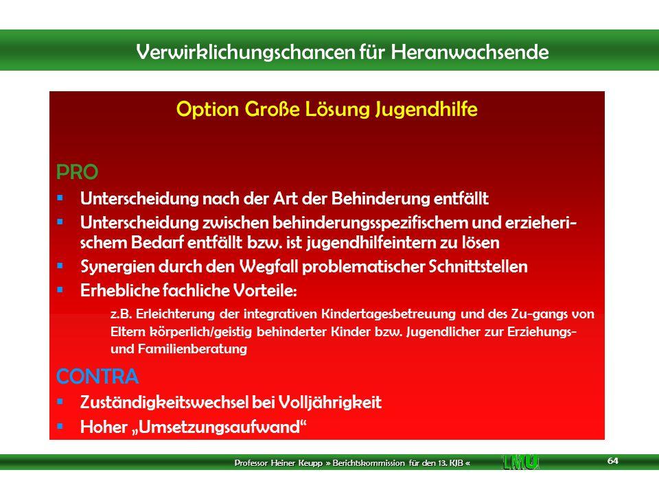 Option Große Lösung Jugendhilfe