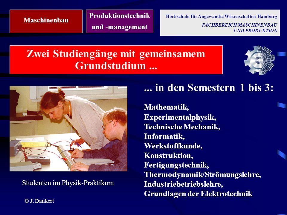 Zwei Studiengänge mit gemeinsamem Grundstudium ...