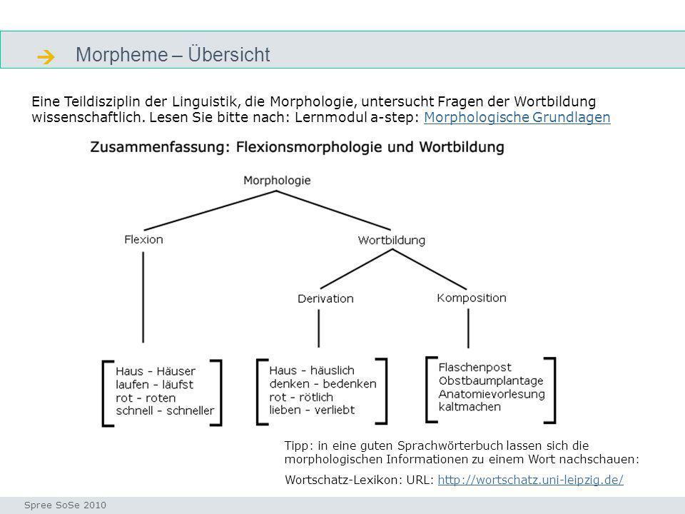  Morpheme – Übersicht. flexionsmorphologie.